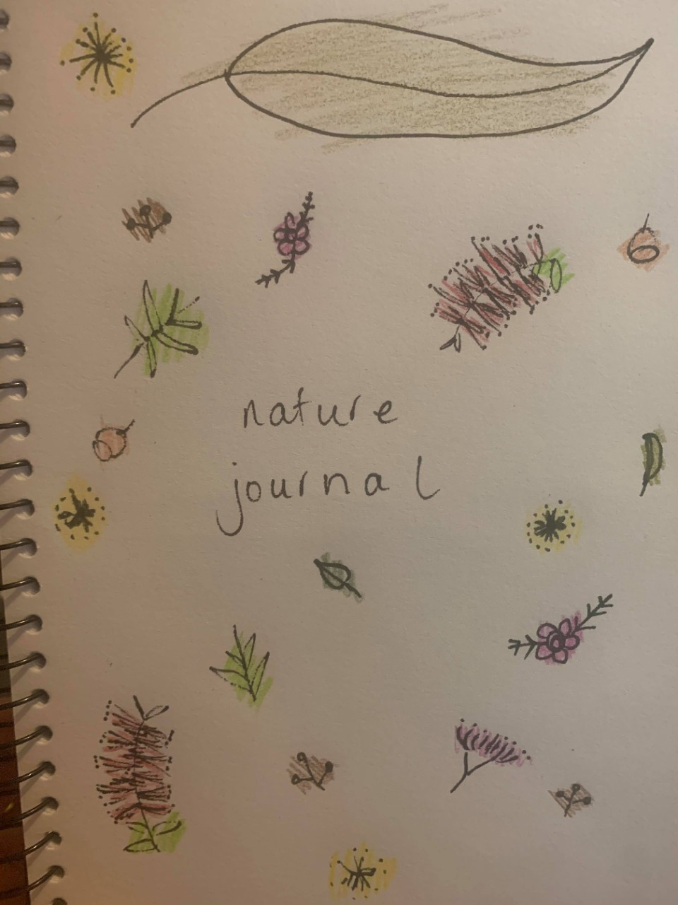 Title page of a nature journal, with small hand-sketched flowers on a page