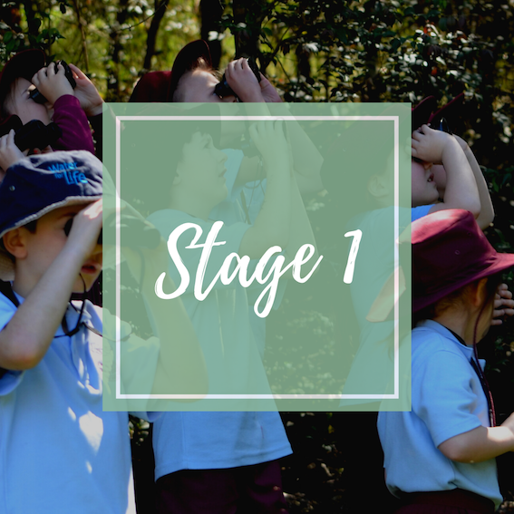 Links to stage 1 learning resources.
